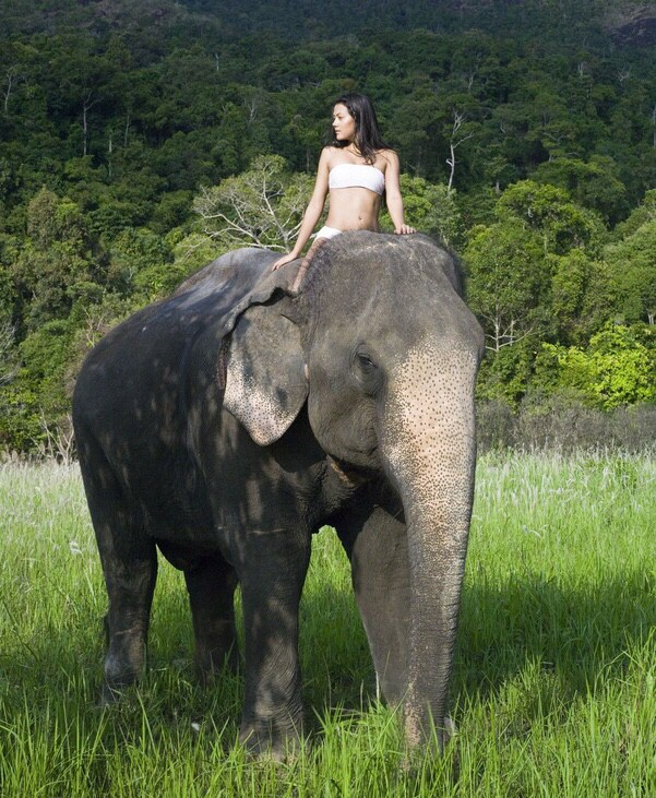 beautiful-nude-woman-riding-an-elephant